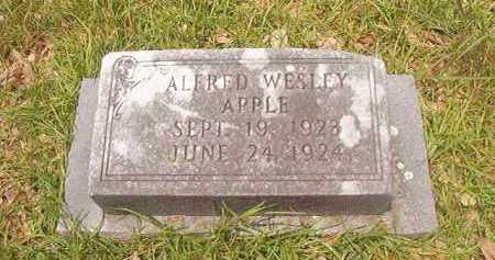 APPLE, ALFRED WESLEY - Bradley County, Arkansas   ALFRED WESLEY APPLE - Arkansas Gravestone Photos