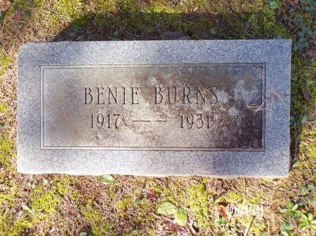 BURNS, BENIE - Bradley County, Arkansas | BENIE BURNS - Arkansas Gravestone Photos
