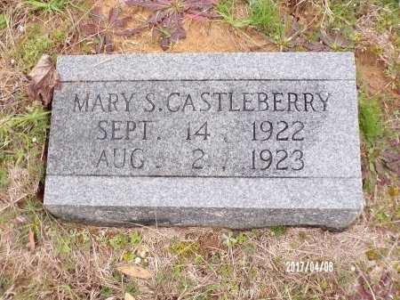 CASTLEBERRY, MARY S - Bradley County, Arkansas | MARY S CASTLEBERRY - Arkansas Gravestone Photos