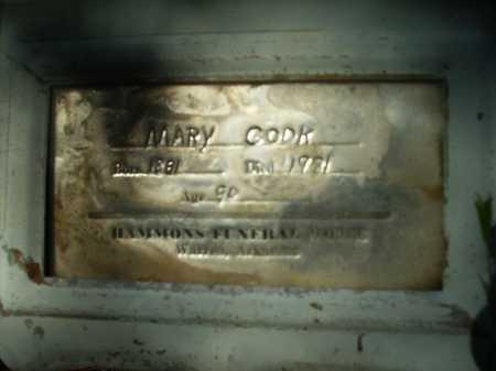 COOK, MARY - Bradley County, Arkansas | MARY COOK - Arkansas Gravestone Photos