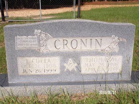 CRONIN, THOMAS W - Bradley County, Arkansas | THOMAS W CRONIN - Arkansas Gravestone Photos