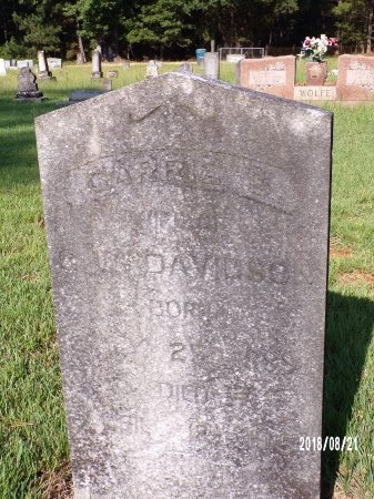 DAVIDSON, CARRIE S - Bradley County, Arkansas | CARRIE S DAVIDSON - Arkansas Gravestone Photos