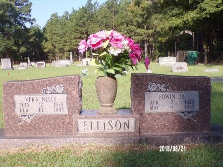 NEELY ELLISON, VERA - Bradley County, Arkansas | VERA NEELY ELLISON - Arkansas Gravestone Photos