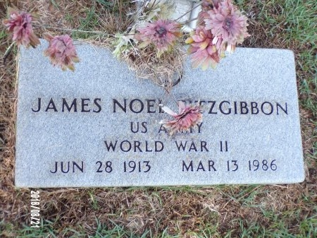 FITZGIBBON (VETERAN WWII), JAMES NOEL - Bradley County, Arkansas | JAMES NOEL FITZGIBBON (VETERAN WWII) - Arkansas Gravestone Photos