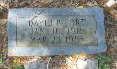 FORT, DAVID B - Bradley County, Arkansas   DAVID B FORT - Arkansas Gravestone Photos