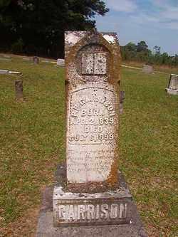 GARRISON, P P - Bradley County, Arkansas | P P GARRISON - Arkansas Gravestone Photos