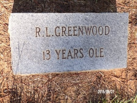 GREENWOOD, R L - Bradley County, Arkansas | R L GREENWOOD - Arkansas Gravestone Photos