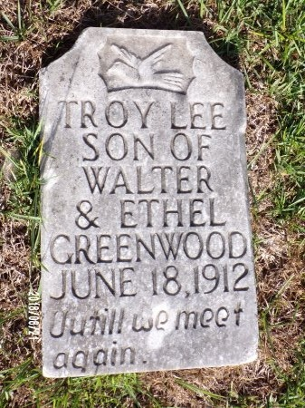 GREENWOOD, TROY LEE - Bradley County, Arkansas | TROY LEE GREENWOOD - Arkansas Gravestone Photos
