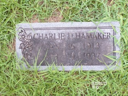 HAMAKER, CHARLIE D - Bradley County, Arkansas | CHARLIE D HAMAKER - Arkansas Gravestone Photos