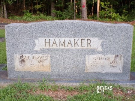 "HAMAKER, ELIZABETH ""LIZZIE"" - Bradley County, Arkansas | ELIZABETH ""LIZZIE"" HAMAKER - Arkansas Gravestone Photos"
