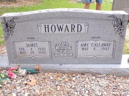 HOWARD, JAMES - Bradley County, Arkansas | JAMES HOWARD - Arkansas Gravestone Photos