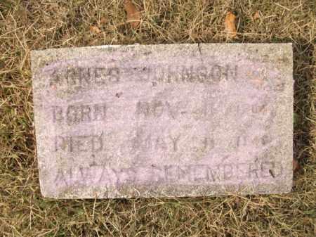 JOHNSON, AGNES - Bradley County, Arkansas   AGNES JOHNSON - Arkansas Gravestone Photos