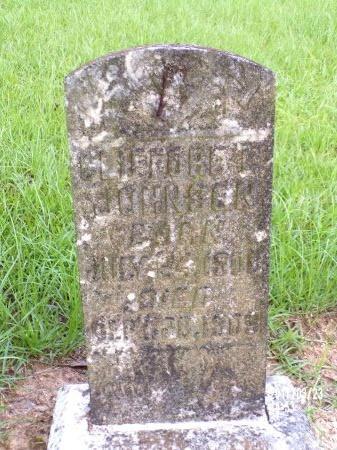 JOHNSON, CLIFFORD L - Bradley County, Arkansas   CLIFFORD L JOHNSON - Arkansas Gravestone Photos