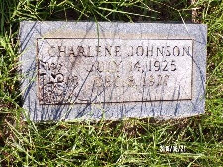 JOHNSON, CHARLENE - Bradley County, Arkansas | CHARLENE JOHNSON - Arkansas Gravestone Photos
