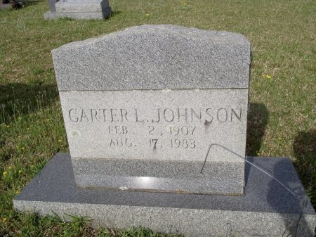 JOHNSON, CARTER L - Bradley County, Arkansas | CARTER L JOHNSON - Arkansas Gravestone Photos
