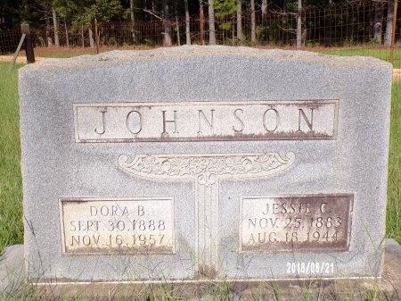 WARREN JOHNSON, DORA B - Bradley County, Arkansas | DORA B WARREN JOHNSON - Arkansas Gravestone Photos