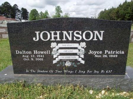 JOHNSON, DALTON HOWELL - Bradley County, Arkansas   DALTON HOWELL JOHNSON - Arkansas Gravestone Photos