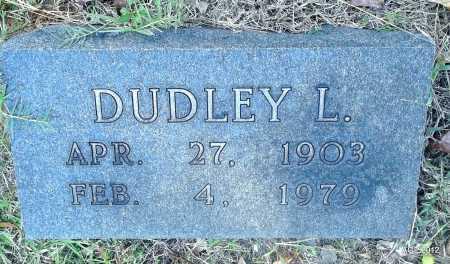 JOHNSON, DUDLEY L - Bradley County, Arkansas | DUDLEY L JOHNSON - Arkansas Gravestone Photos
