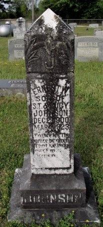 JOHNSON, ERNEST W - Bradley County, Arkansas   ERNEST W JOHNSON - Arkansas Gravestone Photos