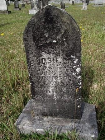 JOHNSON, E JOSIE LEE - Bradley County, Arkansas | E JOSIE LEE JOHNSON - Arkansas Gravestone Photos