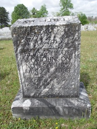 JOHNSON, ELLA - Bradley County, Arkansas | ELLA JOHNSON - Arkansas Gravestone Photos