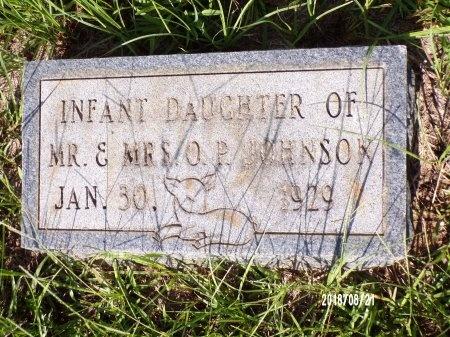 JOHNSON, INFANT - Bradley County, Arkansas | INFANT JOHNSON - Arkansas Gravestone Photos