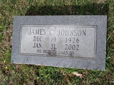 JOHNSON, JAMES CRAVEN - Bradley County, Arkansas   JAMES CRAVEN JOHNSON - Arkansas Gravestone Photos