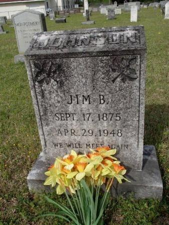 JOHNSON, JIM B - Bradley County, Arkansas | JIM B JOHNSON - Arkansas Gravestone Photos