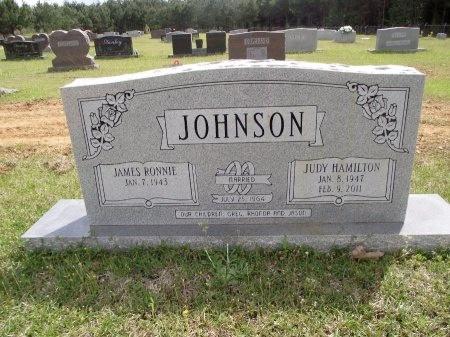 JOHNSON, JUDY - Bradley County, Arkansas | JUDY JOHNSON - Arkansas Gravestone Photos