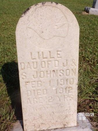 JOHNSON, LILLE - Bradley County, Arkansas | LILLE JOHNSON - Arkansas Gravestone Photos