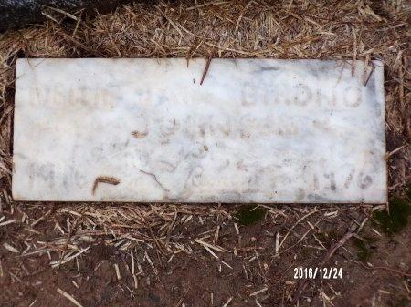 JOHNSON, MELLIE JANE - Bradley County, Arkansas   MELLIE JANE JOHNSON - Arkansas Gravestone Photos