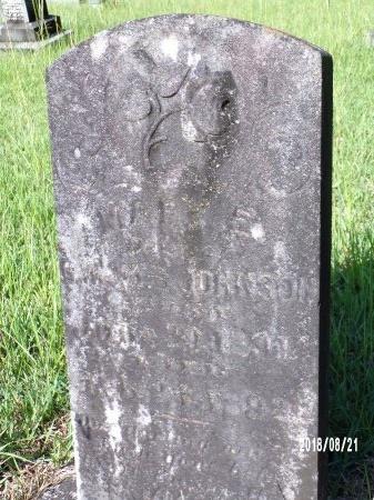 JOHNSON, MARY E - Bradley County, Arkansas | MARY E JOHNSON - Arkansas Gravestone Photos