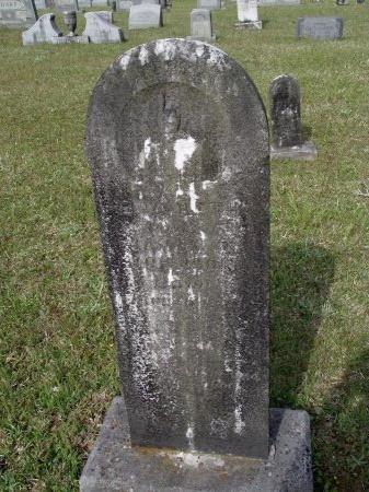 JOHNSON, MARTHA ELIZABETH - Bradley County, Arkansas | MARTHA ELIZABETH JOHNSON - Arkansas Gravestone Photos