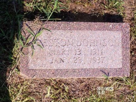 JOHNSON, PRESTON - Bradley County, Arkansas   PRESTON JOHNSON - Arkansas Gravestone Photos