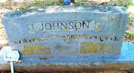 JOHNSON, RODNEY S - Bradley County, Arkansas | RODNEY S JOHNSON - Arkansas Gravestone Photos