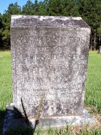 STURGIS JOHNSON, SUSAN E - Bradley County, Arkansas | SUSAN E STURGIS JOHNSON - Arkansas Gravestone Photos