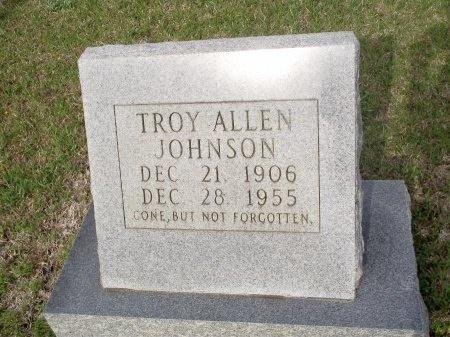 JOHNSON, TROY ALLEN - Bradley County, Arkansas   TROY ALLEN JOHNSON - Arkansas Gravestone Photos