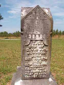 JOHNSON, T G - Bradley County, Arkansas | T G JOHNSON - Arkansas Gravestone Photos