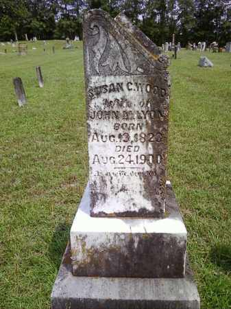 LYON, SUSAN C - Bradley County, Arkansas | SUSAN C LYON - Arkansas Gravestone Photos