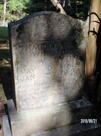 LYON, THAODOCIA M - Bradley County, Arkansas | THAODOCIA M LYON - Arkansas Gravestone Photos