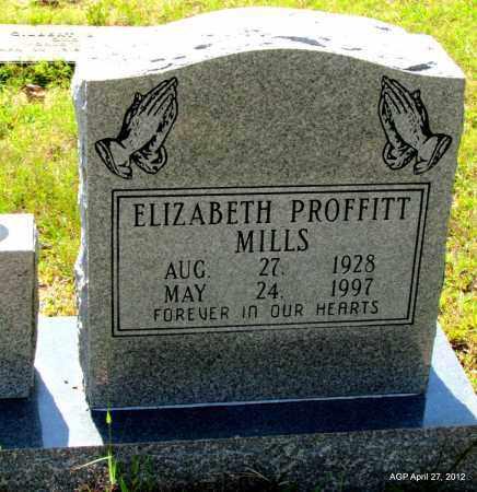 MILLS, ELIZABETH - Bradley County, Arkansas   ELIZABETH MILLS - Arkansas Gravestone Photos