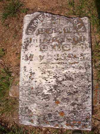 NEELY, CYNTHIA - Bradley County, Arkansas | CYNTHIA NEELY - Arkansas Gravestone Photos