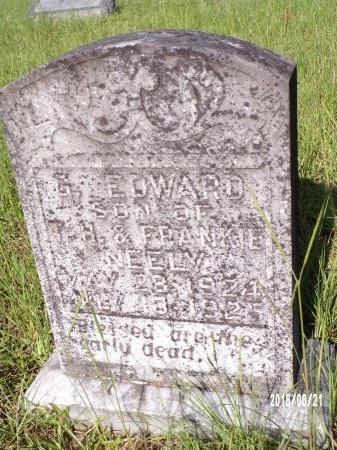NEELY, G EDWARD - Bradley County, Arkansas | G EDWARD NEELY - Arkansas Gravestone Photos