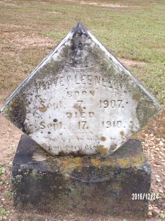 NEELY, HARVEY LEE - Bradley County, Arkansas | HARVEY LEE NEELY - Arkansas Gravestone Photos