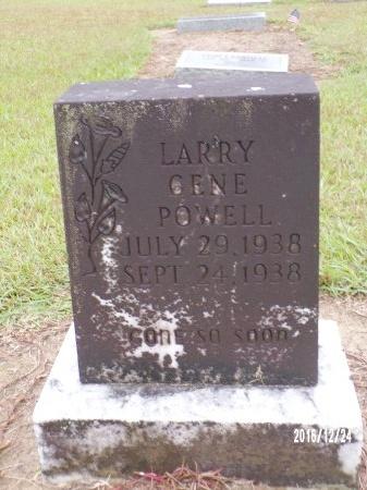 POWELL, LARRY GENE - Bradley County, Arkansas | LARRY GENE POWELL - Arkansas Gravestone Photos