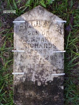 RICHARDS, CHARLEY E (OLD MARKER) - Bradley County, Arkansas | CHARLEY E (OLD MARKER) RICHARDS - Arkansas Gravestone Photos