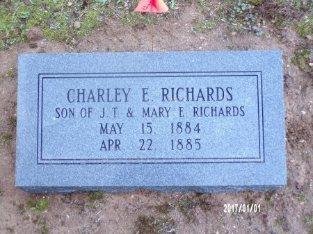 RICHARDS, CHARLEY E (NEW MARKER) - Bradley County, Arkansas | CHARLEY E (NEW MARKER) RICHARDS - Arkansas Gravestone Photos