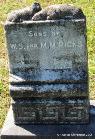 RICKS, SONS - Bradley County, Arkansas   SONS RICKS - Arkansas Gravestone Photos