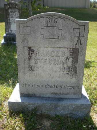 STEDMAN, FRANCES E - Bradley County, Arkansas | FRANCES E STEDMAN - Arkansas Gravestone Photos