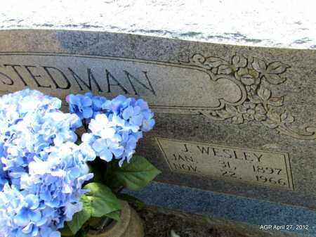 STEDMAN, J WESLEY - Bradley County, Arkansas | J WESLEY STEDMAN - Arkansas Gravestone Photos